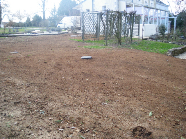 Lawn seeded